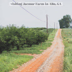Farm Charm: Outtakes from my Day Trip to Jaemor Farms (in Alto, Georgia)