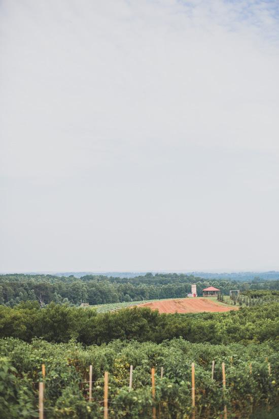 Jaemor Farms, Georgia