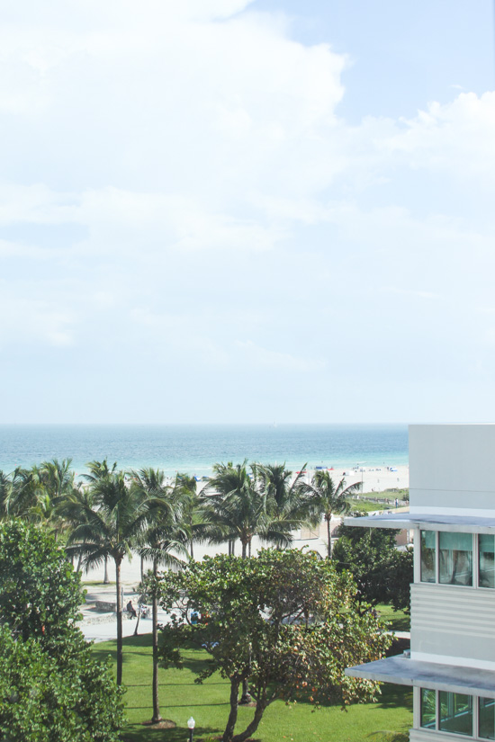 Miami Travel Guide: The Best Places to Visit in Miami, Florida
