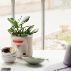 Planter Banter: 4 Tips for Finding the Perfect Plants (and Planters) for your Home
