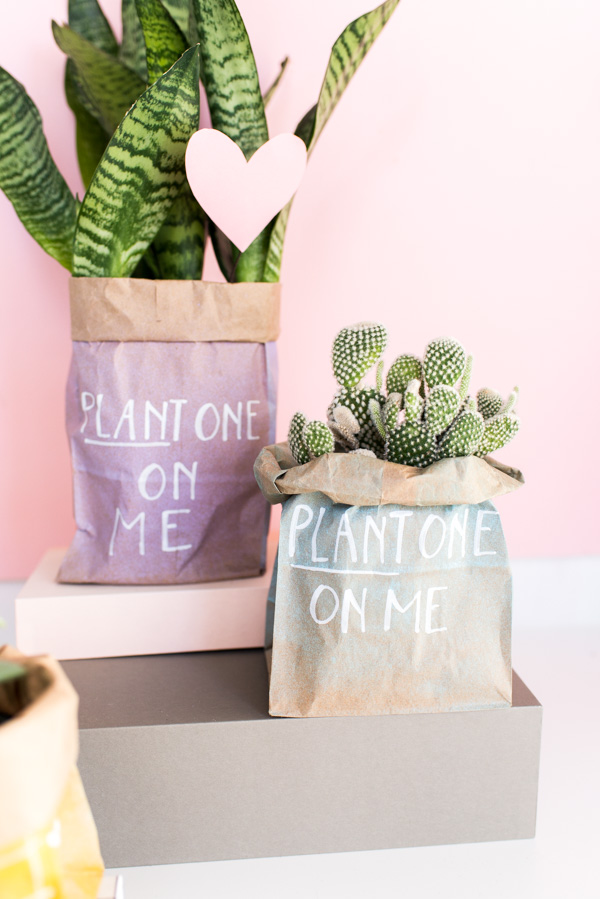 Plant One On Me... DIY Valentines in 5 Minutes