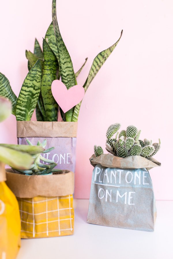 Plant One On Me // Budget-Friendly DIY Valentines Using Spray Painted Paper Bags