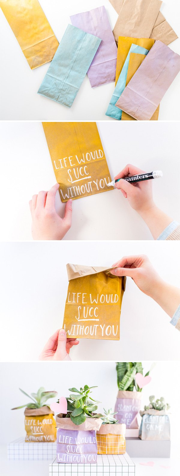 DIY Planted Paper Bag Valentines in 5 Minutes