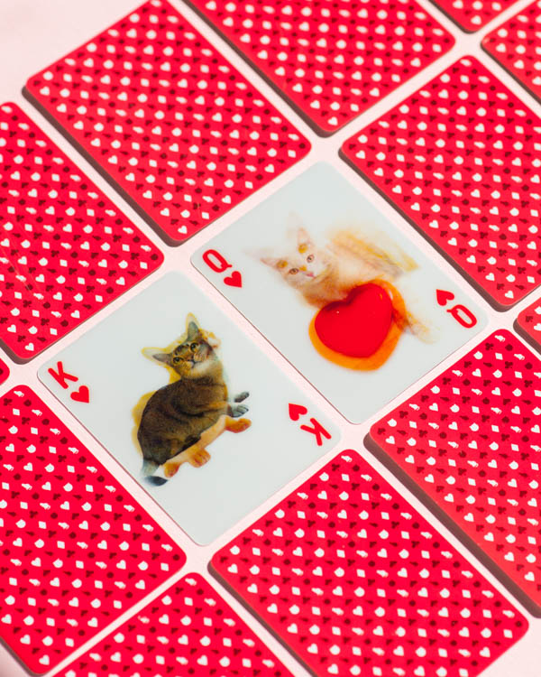 3-D cat cards for Valentine's Day