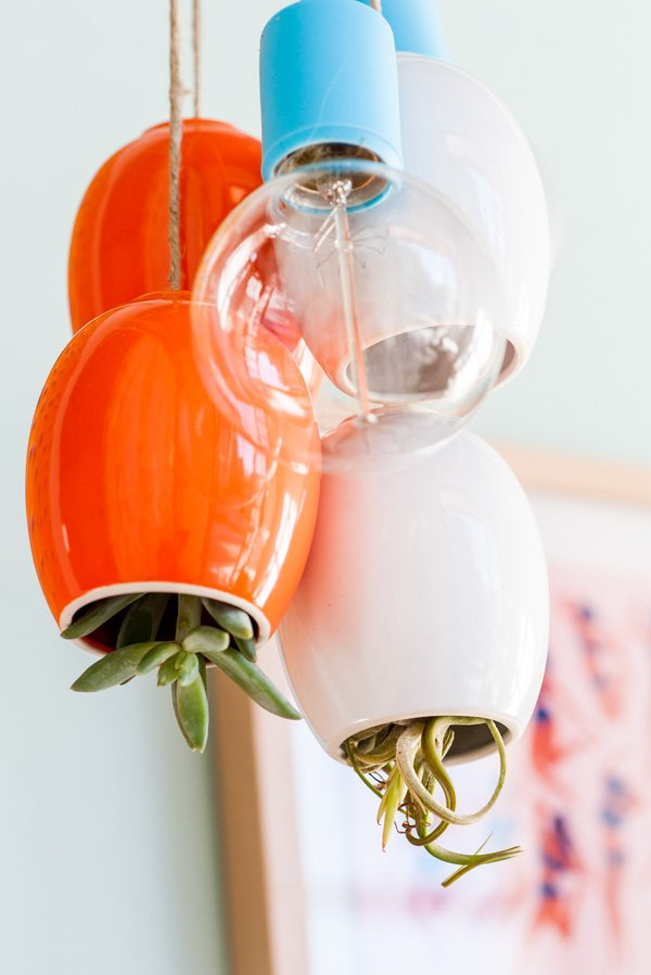 Hanging cluster of colorful lighting and plant pods