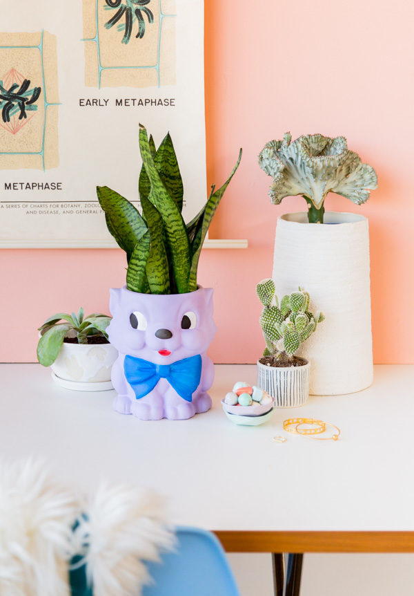 How to Paint Ceramics + Transform a Cookie Jar into a Cat Planter
