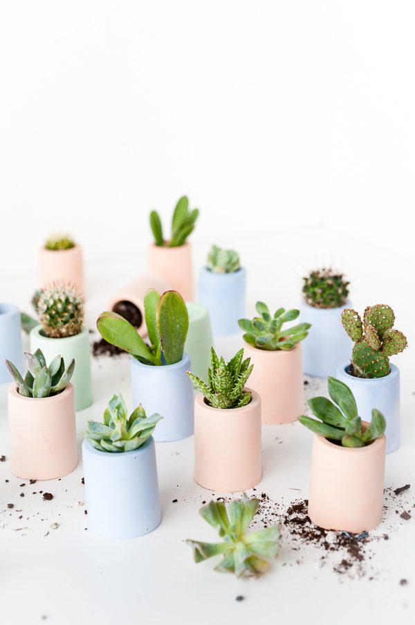 Tiny DIY Planters