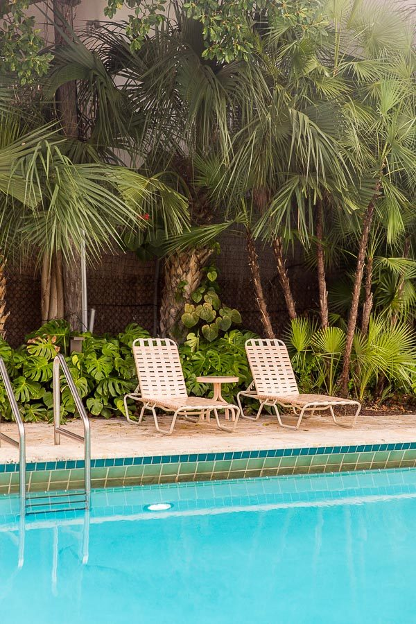 Pink pool chairs and palm trees in Miami ( a 72 hour travel guide)