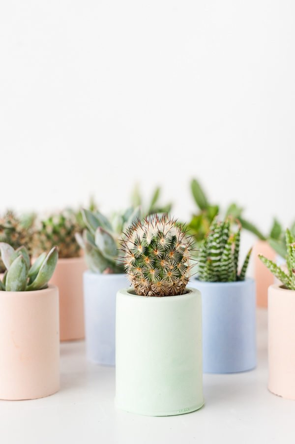 plaster mini planters DIY (and 40+ other DIY holiday gift ideas that don't suck)