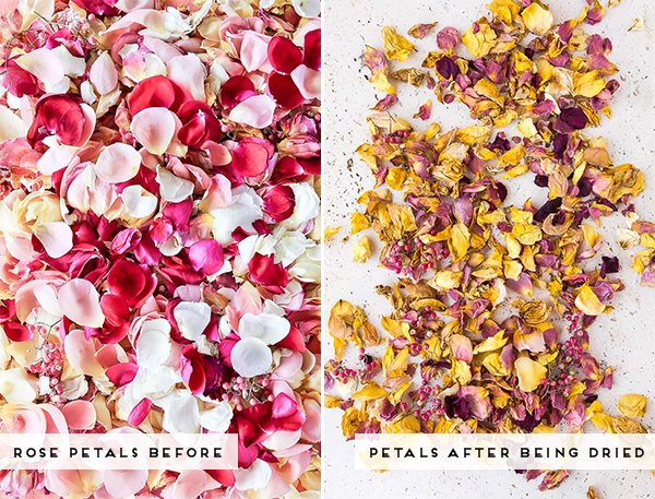 How to dry out rose petals