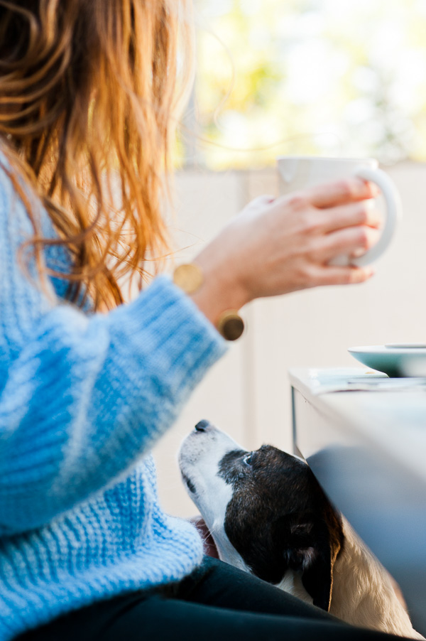 Brittni Mehlhoff shares a look at life behind the scenes as a blogger (and animal lover).