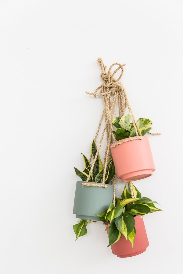 A $5 hanging planter DIY