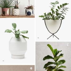 16 Drool-Worthy Planters for Spring / Summer