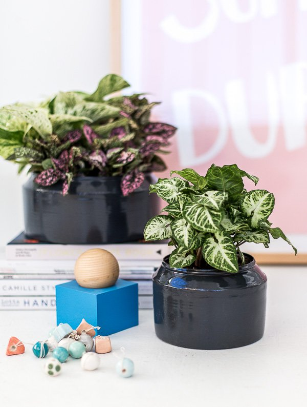 A DIY Metal Planter Makeover in Under an Hour