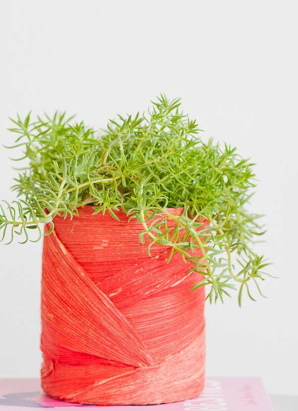 Unique DIY planter idea using an unlikely material (that gives it texture). Click through for the step by step instructions.