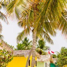 My Trip to Catalina Island, Dominican Republic