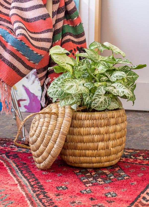 Woven beehive basket as a DIY planter