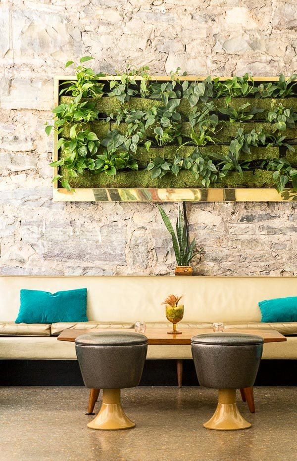 Living wall art in a gold frame!