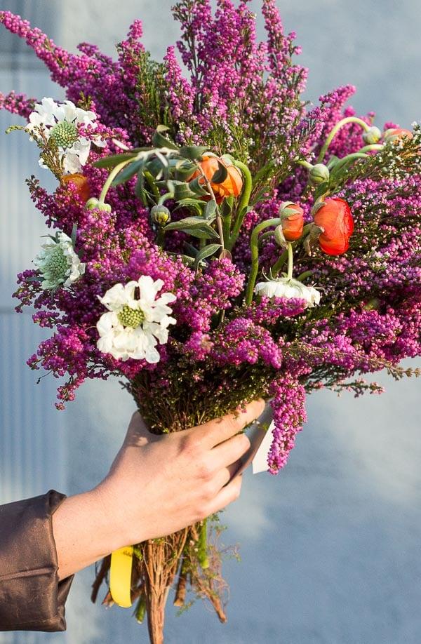 A giant bouquet of heather, ranunculus, scabiosa, etc. #flowerpower #flowers #bouquet #floral #colorful #blue #purple