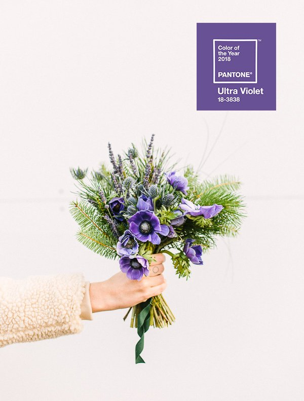 2018 Pantone Color of the Year. What do you think of Ultra Violet? Are you a fan? Click through to weigh in and see a DIY bouquet inspired by the newest Pantone favorite. #purple #ultraviolet #flowers #floral #pantone #coloroftheyear #bouquet