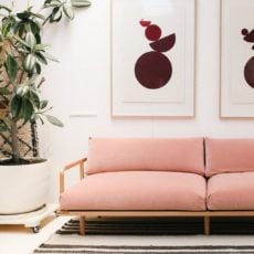 What Do you Think of the Colorful Couch Trend?