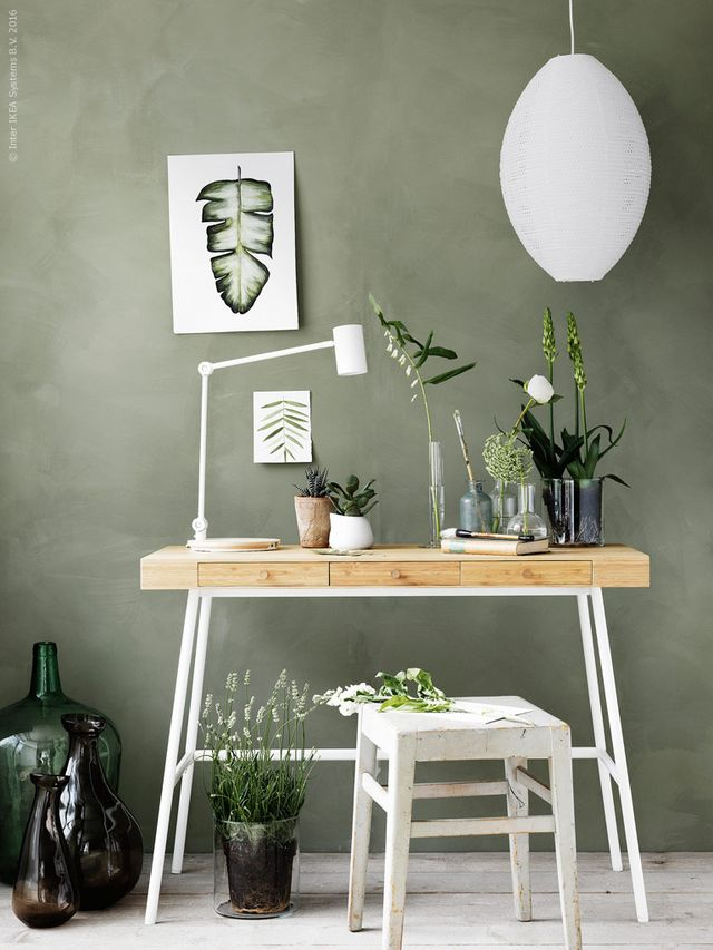 Photo of sage green wall in a minimal modern office space.