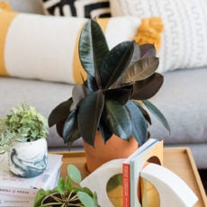 Easy Planter Hack: How to Convert Used Candle Containers to Cool Planters in Minutes