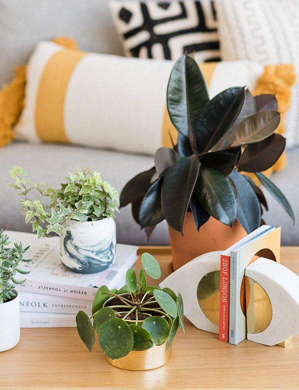 Easy Planter Hack: How to Convert Used Candle Containers to Cool Planters in Minutes. #diyplanter #diy #planterideas
