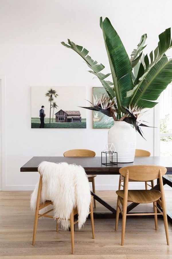 Add oversized houseplants to get the tropical resort decor look.11 Steps to Resort Decor: How to Bring Vacation Vibes Home When You Can't Get Away #resortdecor #birdofparadise #houseplant #tropical