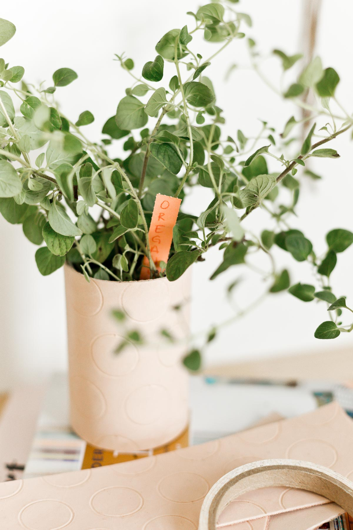 Create a chic indoor herb garden with DIY embossed leather planters (and herb markers). #leather #diy #leatherdiy #indoorherbgarden #polkadot #herbs