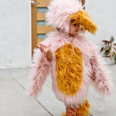 How to Make a (Kids) Bird Costume for Halloween