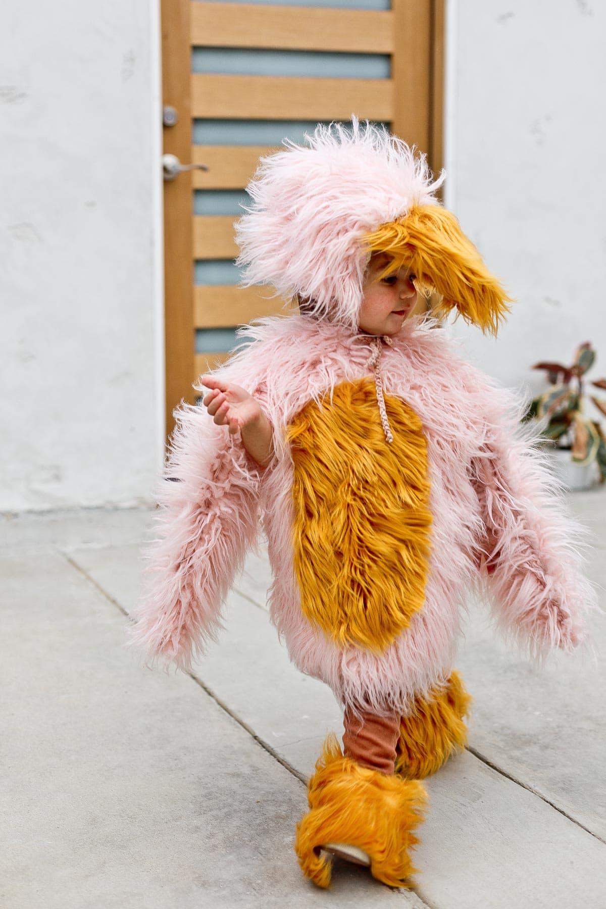 Child wearing pink kids bird costume for Halloween, walking.