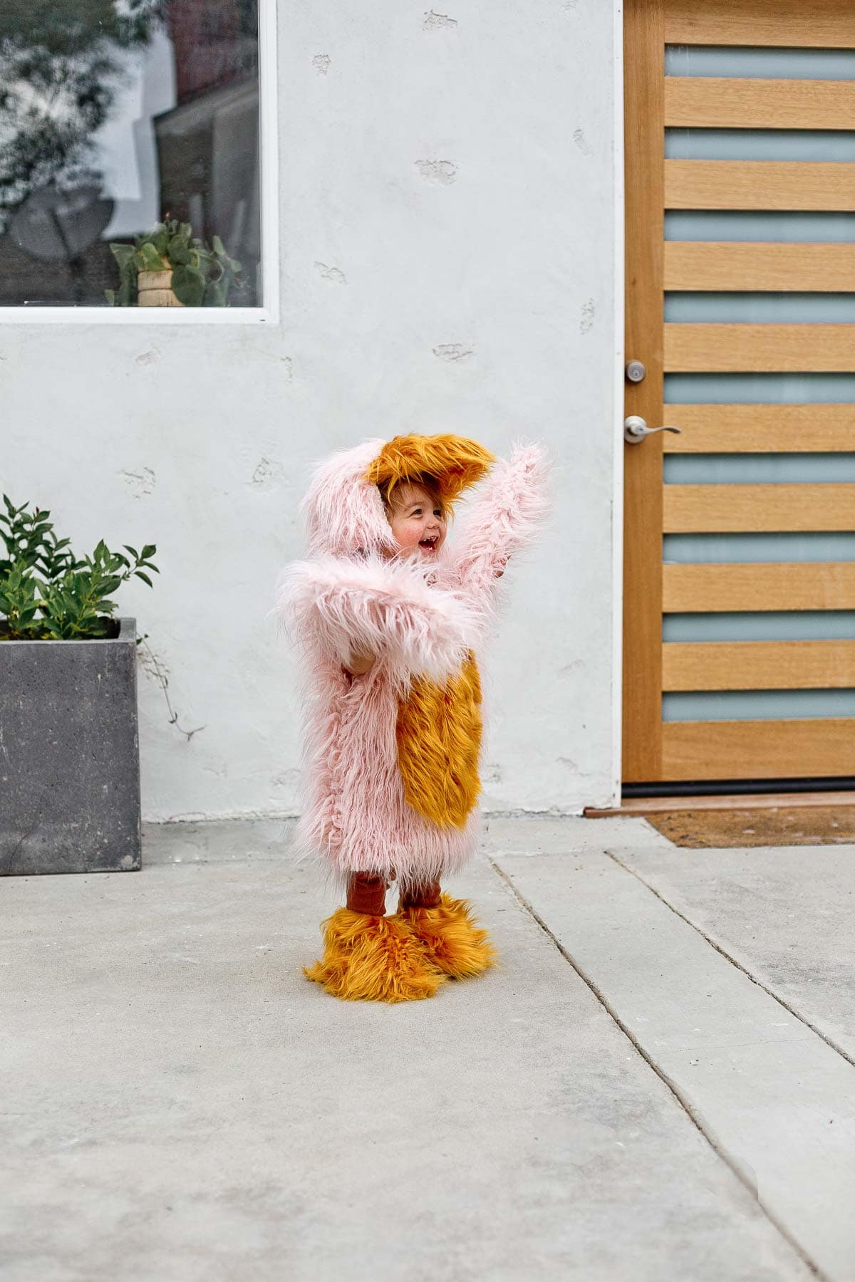 Child wearing a kids bird costume for Halloween, flapping his wings.