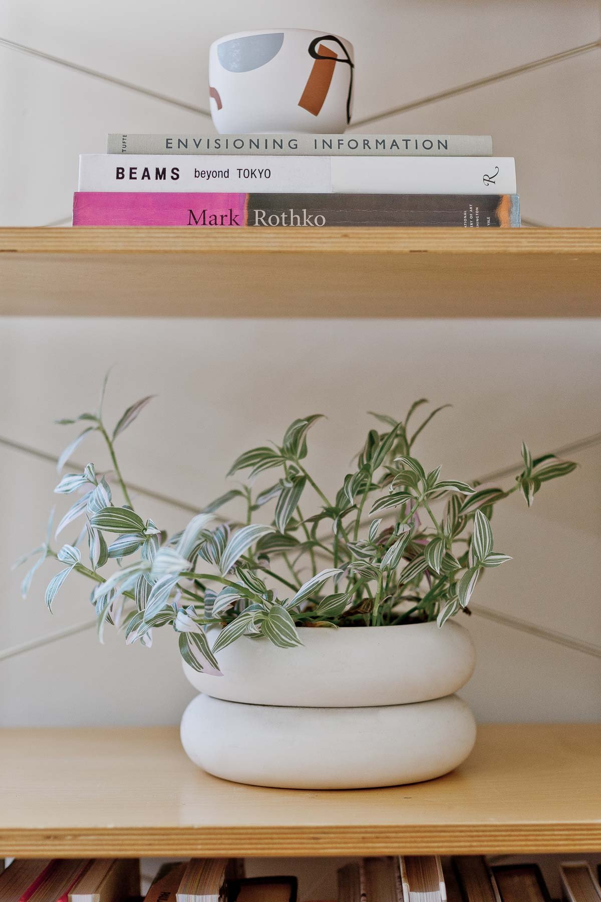 book shelf with modern plant and planter on one shelf and books styled with a candle on the other