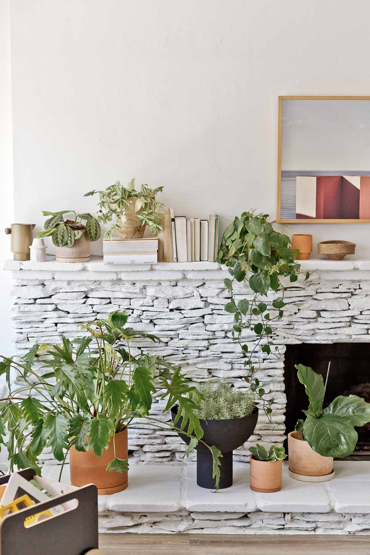large plants on painted white fireplace hearth of stacked stone