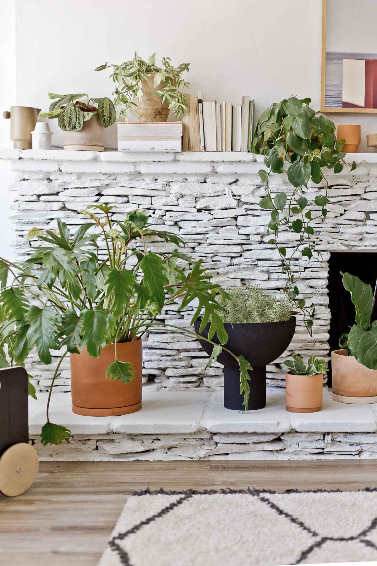 painted white stone fireplace with large plants and books
